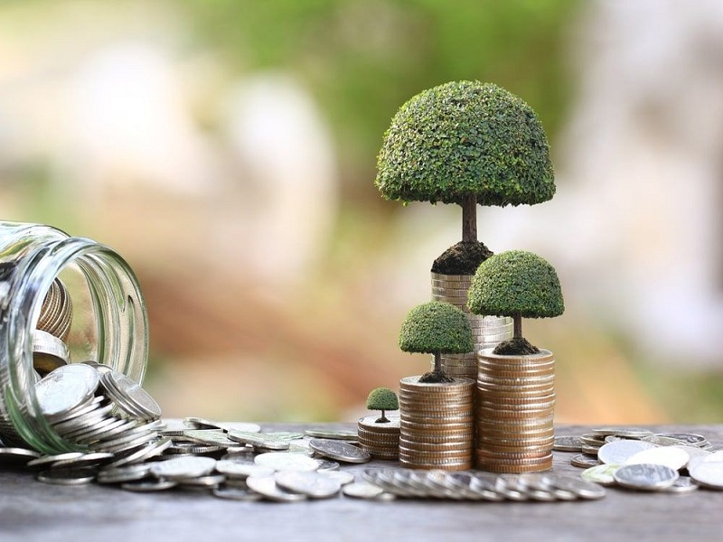 Các loại đầu tư tài chính cơ bản