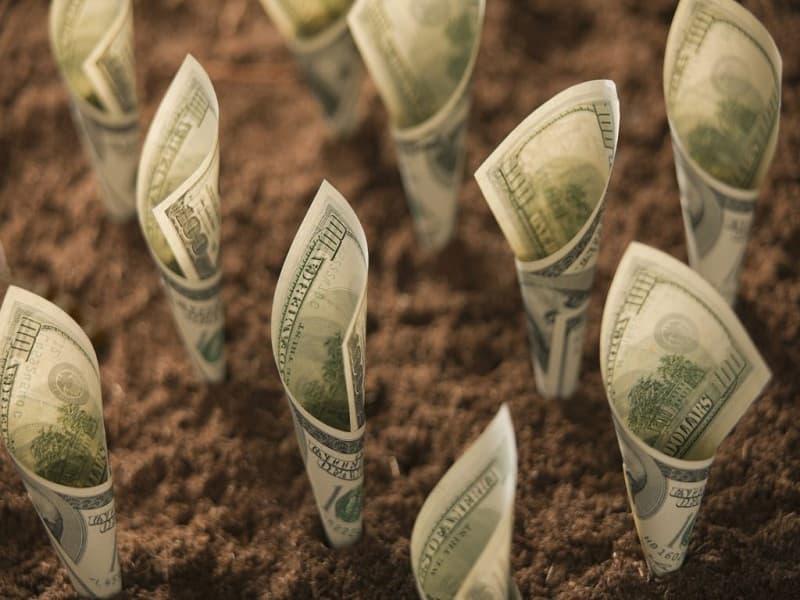 Các công ty đầu tư tài chính chuyên nghiệp mang đến lợi nhuận cao